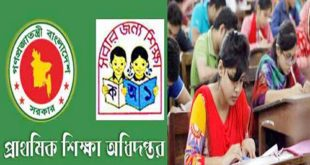 Primary Teacher Exam Result 2019