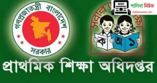 Primary Teacher Job Circular 2020